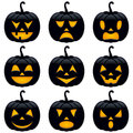 Halloween Black Pumpkins Colle...