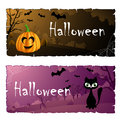 Halloween card set with cat and pumpkin cemetery in background Stock Images