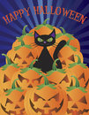 Halloween Cat with Pumpkins Illustration Stock Photos