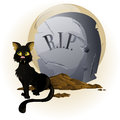 Halloween Cat on Tombstone Royalty Free Stock Image