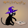 Halloween cat vector this is file of eps format Stock Photo