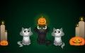 Halloween cats Royalty Free Stock Photo