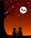Halloween Cats Silhouette With Bats Royalty Free Stock Photo