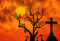 Halloween concept background with scary silhouette dead tree and spooky silhouette crosses in mystic graveyard and full moon Royalty Free Stock Photo