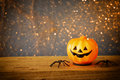 Halloween concept. Cute pumpkins on wooden table Royalty Free Stock Photo