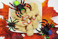 Halloween cookies witch's fingers Stock Image