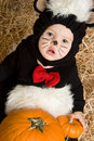 Halloween Costume Baby Royalty Free Stock Photography