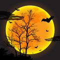 Halloween design eps illustrator Stock Photo