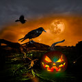 Halloween design full moon ravens jack o lantern holiday party background copyspace for text message flyer or cartoon invitation Royalty Free Stock Photo