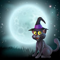 Halloween full moon witch cat illustration of a in a pointy hat in front of a big on a misty night Royalty Free Stock Photo