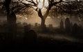 Halloween graveyard Royalty Free Stock Photo