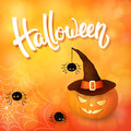 Halloween greeting card with pumpkin wearing hat, angry spiders, net and 3d brush lettering on orange background with