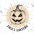 Halloween hand drawn pumpkin Jack`s Lantern vector illustration.