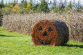 Halloween hay bale decorated straw on a farm in rural prince edward island canada Stock Images