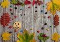 The frame is made of autumn leaves of maple and Rowan, scary smiley on cookies, colorful candies on a wooden background. Royalty Free Stock Photo