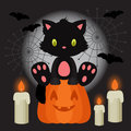 Halloween illustration with black kitten sitting on the pumpkin Royalty Free Stock Photo