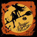 Halloween illustration with witch silhouette beautiful flying on the broom cat Royalty Free Stock Photo