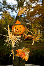 Halloween Jack-o-lanten Scarecrow - 1 Royalty Free Stock Photo