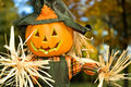 Halloween Jack-o-lanten Scarecrow - 2 Royalty Free Stock Photo