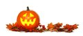 Halloween Jack o Lantern with autumn leaf border over white Royalty Free Stock Photo
