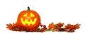 Halloween Jack o Lantern with autumn leaf border over white