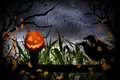 Halloween Jack-O-Lantern and Crows Royalty Free Stock Photo