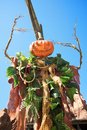 Halloween jack o lantern made with tree leaves and branches Stock Photography