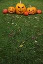 Halloween Jack-o-Lanterns Royalty Free Stock Photo