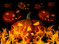 Halloween many pumpkin with flame concept religious feast Stock Photography