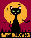 Halloween Night with Black Cat Royalty Free Stock Photo