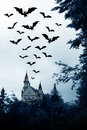 Halloween. Night? castle and bats. Royalty Free Stock Images