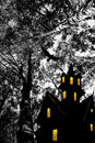Halloween. Night. Moon, castle and bird. Stock Images
