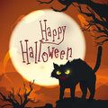 Halloween night scene with mad cat on spooky background, Vector Illustration