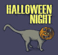 Halloween night vector illustration of black cat with pumpkin on head Stock Images