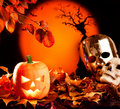 Halloween orange pumpkin on autumn leaves Stock Image