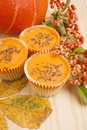 Halloween orange pumpkin cup cakes Stock Photos