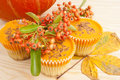Halloween orange pumpkin cup cakes Stock Photo