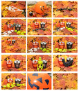 Halloween outdoor Set Stock Photos