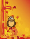 Halloween owl sitting on pumpkin in forest illustration happy orange fall color cartoon jack o lantern carved with fall color Royalty Free Stock Photo