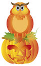 Halloween owl sitting on pumpkin illustration happy orange fall color cartoon jack o lantern carved isolated white background Stock Image