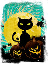 Halloween party background with cat grunge pumpkins black and moon on starry sky Stock Photos