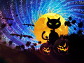 Halloween party background with cat pumpkins black and moon on starry sky Royalty Free Stock Photography