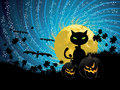 Halloween party background with cat pumpkins black and moon on starry sky Stock Images