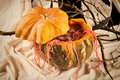 Halloween party cocktail still life Royalty Free Stock Photo
