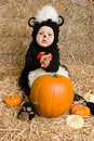 Halloween Pumpkin Baby Royalty Free Stock Images