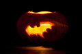 Halloween pumpkin bat Royalty Free Stock Photo