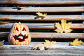 Halloween pumpkin on the bench funny with moustache wooden in park Royalty Free Stock Photo