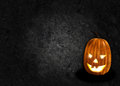 Halloween pumpkin black background Stock Image