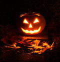 Halloween pumpkin in dark garden glowing candle light Royalty Free Stock Images