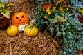 Halloween Pumpkin Decoration A...